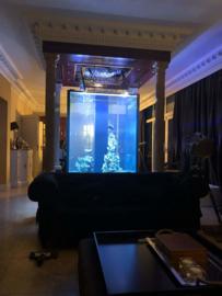 Aquarium ter plaatste gebouwd 125x125x150 gelaagd glas