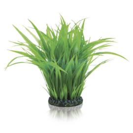 biOrb grasring L groen