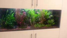 Aquarium op maat voor in bestaand (wand) meubel