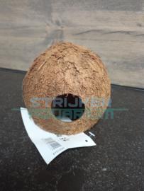 JBL Cocos Cava/ Kokosnoot 3/4