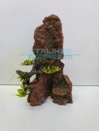 rots met plant rood