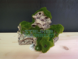 Decoratie kunst steen met mos
