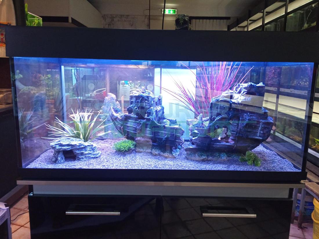 Aquarium boot kopen