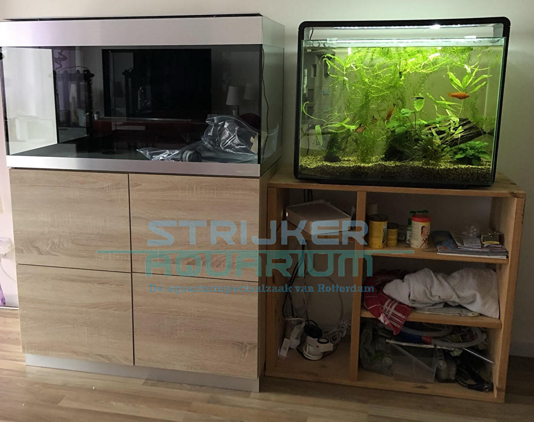 Oase Highline aquarium kopen
