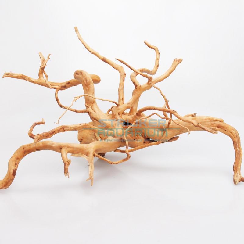 Spiderwood kopen