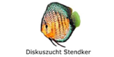 De mooiste Stendker discusvissen direct uit Duitsland koopt u bij ons