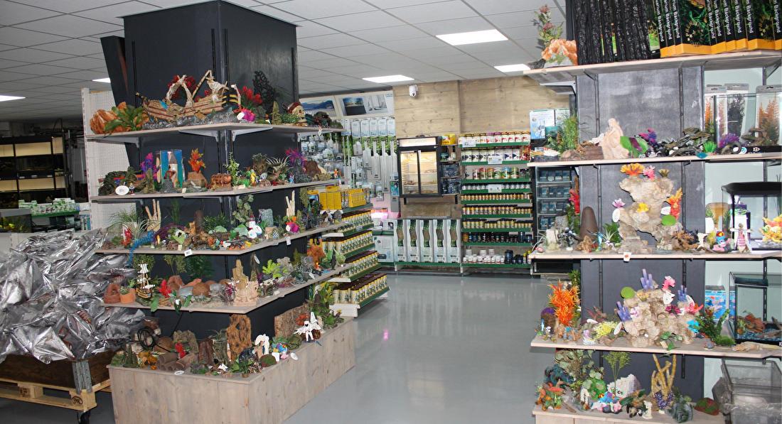 Aquariumwinkel open