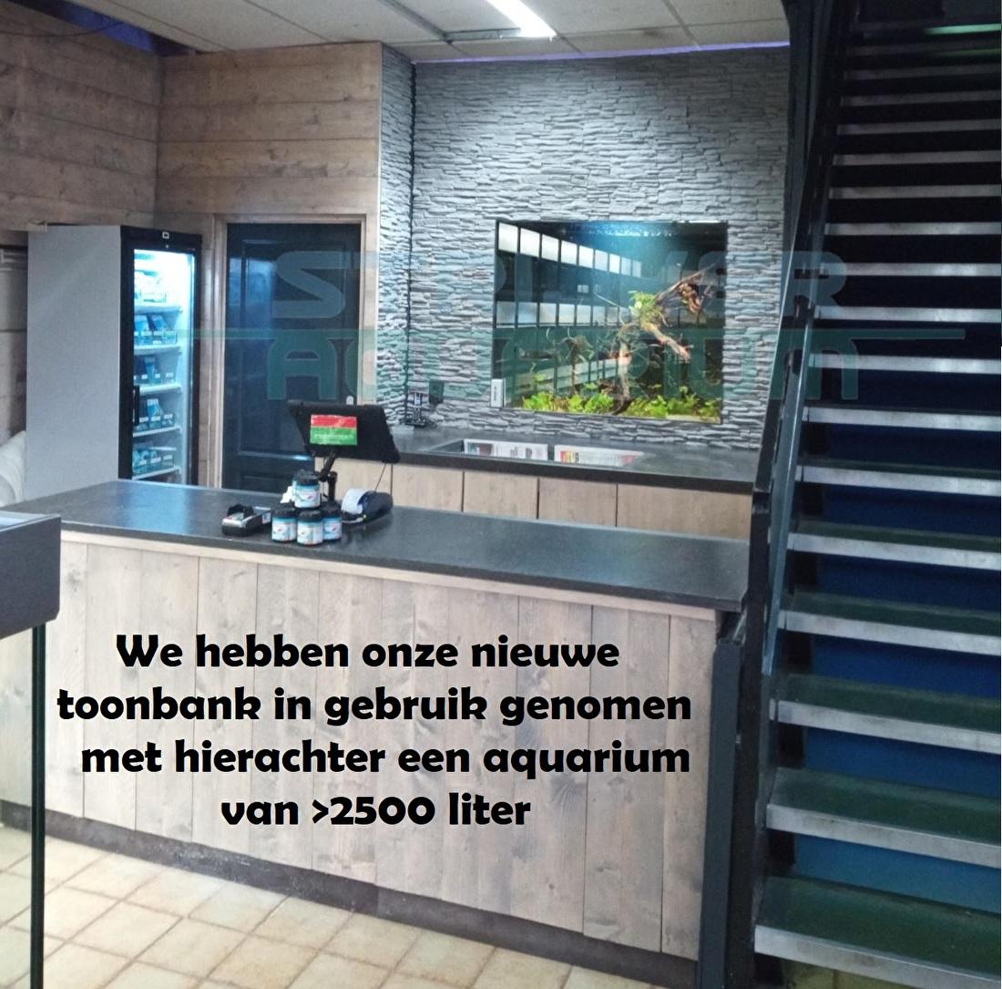 Aquarium toonbank kassa Strijker Rotterdam