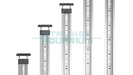 Oase premium highline led