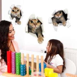 Muursticker 3D Katten/Poezen die door de muur kruipen 53 x 82cm