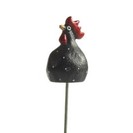 Kip zwart op pen