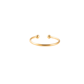 Ring Simple