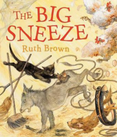 The Big Sneeze (Ruth Brown) Paperback / softback