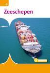 Zeeschepen (Pieter Schouten)