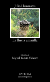 LLUVIA AMARILLA