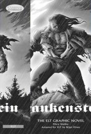 Comics: Frankenstein Class Set 10 Books With Audio Cd (x1)