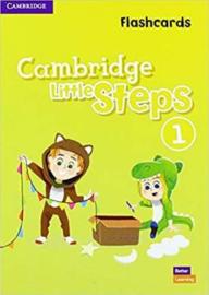 Cambridge Little Steps Level 1 Flashcards