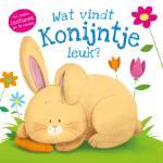 Wat vindt konijntje leuk? (Gabriel Cortina) (Hardback)