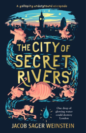 The City Of Secret Rivers (Jacob Sager Weinstein)