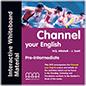 Channel Pre-intermediate Interactive Whiteboard Material Dvd
