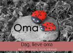 Dag, lieve oma (Kirstin Rozema & Sandy Wijsbeek)