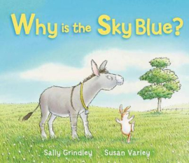 Why Is The Sky Blue? (Sally Grindley) Paperback / softback