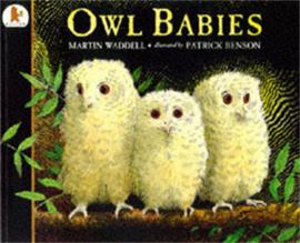 Owl Babies Big Book (Martin Waddell, Patrick Benson)