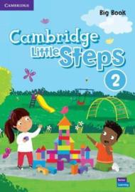 Cambridge Little Steps Level 2 Big Book