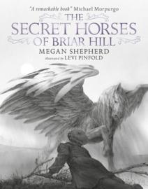 The Secret Horses Of Briar Hill (Megan Shepherd, Levi Pinfold)