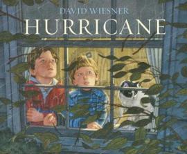 Hurricane (David Wiesner) Paperback / softback