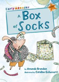 A Box of Socks