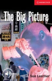 The Big Picture: Paperback