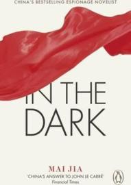In The Dark (Mai Jia)