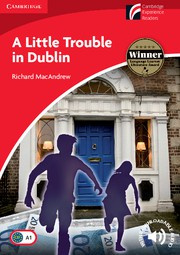 A Little Trouble in Dublin: Paperback