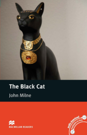 The Black Cat Reader