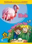 Birds/The mysterious Egg**