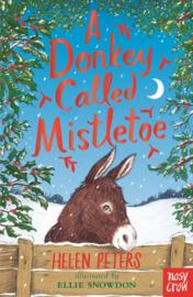 A Donkey Called Mistletoe (Paperback)