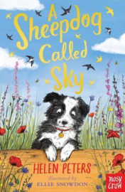 A Sheepdog Called Sky