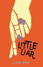 Little Liar (Julia Gray) Paperback / softback