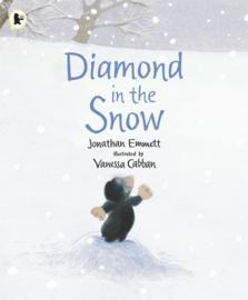 Diamond In The Snow (Jonathan Emmett, Vanessa Cabban)