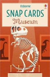 Museum snap cards