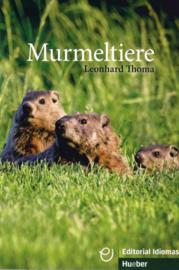 Murmeltiere Buch