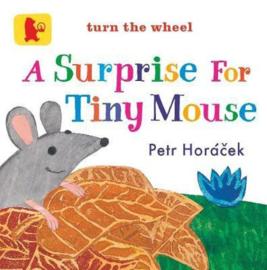 A Surprise For Tiny Mouse (Petr Horacek)