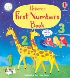 Usborne First Numbers Book