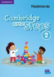 Cambridge Little Steps Level 2 Flashcards