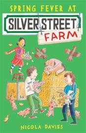 Spring Fever At Silver Street Farm (Nicola Davies, Katharine McEwen)