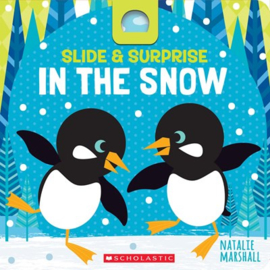 Slide & Surprise in the Snow