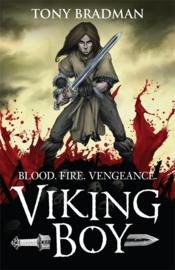 Viking Boy (Tony Bradman)