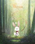 Wens (Chris Saunders)