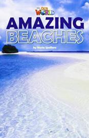 Our World 5 Amazing Beaches